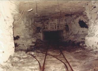 coal-miners-L-15